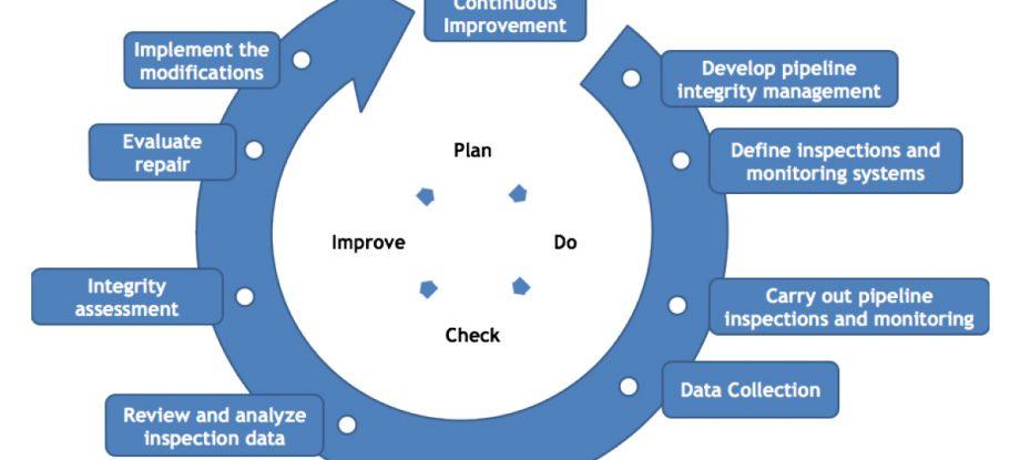 PIMS Graphic